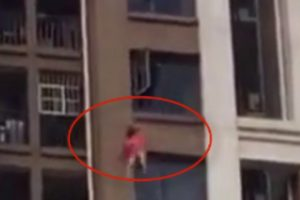 Precipita dal suo appartamento al 18°piano, il tragico epilogo